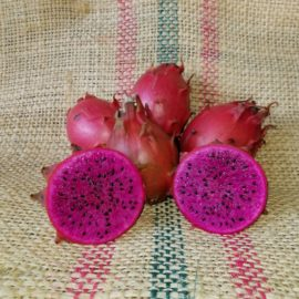 Hylocereus Setaceus Dragon Fruit Spicy Exotics