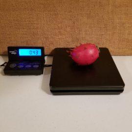 Hylocereus Setaceus Dragon Fruit Weight