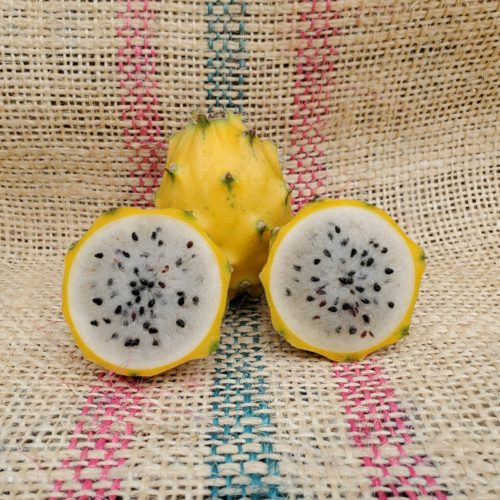 Palora Dragon Fruit Spicy Exotics