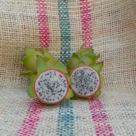 Dragon Fruit variety Bruni fruit spicy Exotics