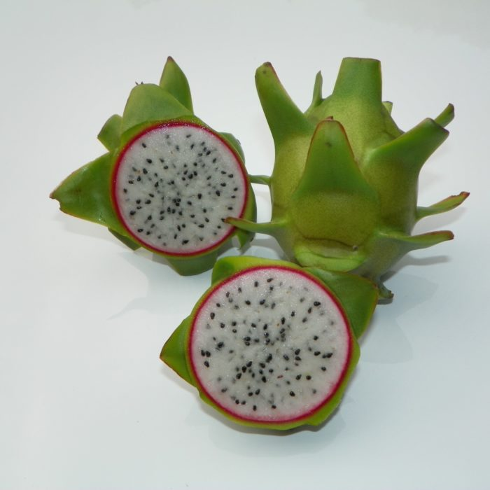 Connie Mayer Dragon Fruit Sliced