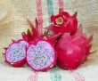 Dragon Fruit variety Delight fruit sliced