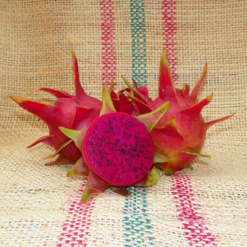 Dragon Fruit variety Hylocereus guatemalensis fruit Spicy Exotics
