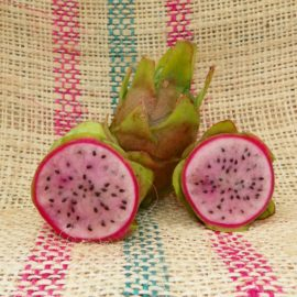 Dragon Fruit variety Kathie Van Arum fruit Spicy Exotics
