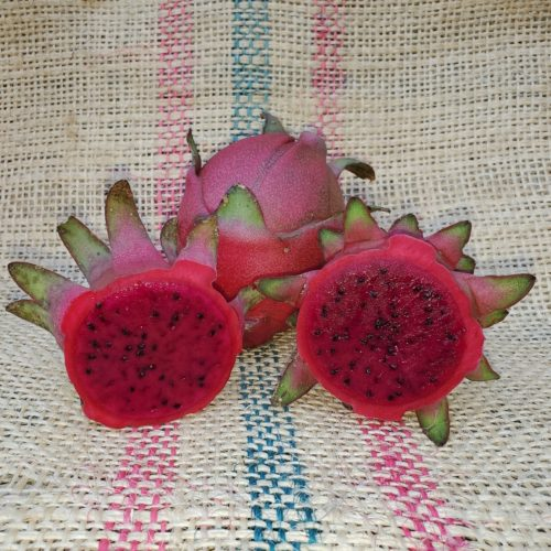 Lisa Dragon Fruit Spicy Exotics