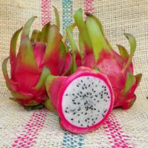 Dragon Fruit variety Maui Dragon from Spicy Exotics