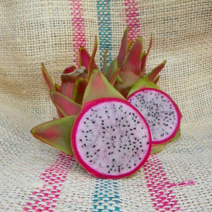 Dragon Fruit variety Maria Rosa fruit