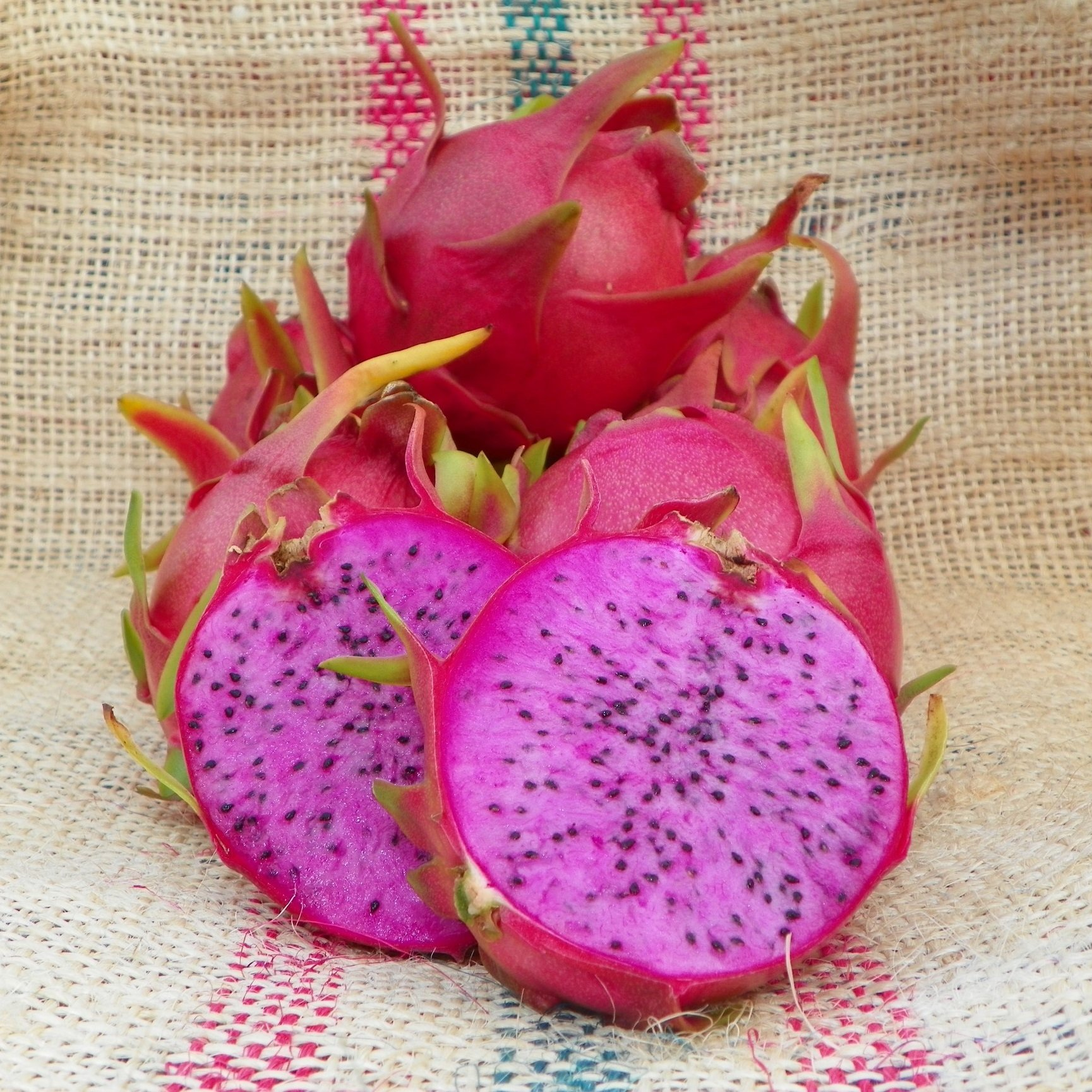 Dragon Fruit variety Physical Graffiti fruit sliced