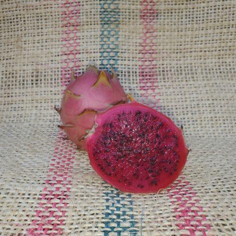 Vivid Purpurea Dragon Fruit Spicy Exotics