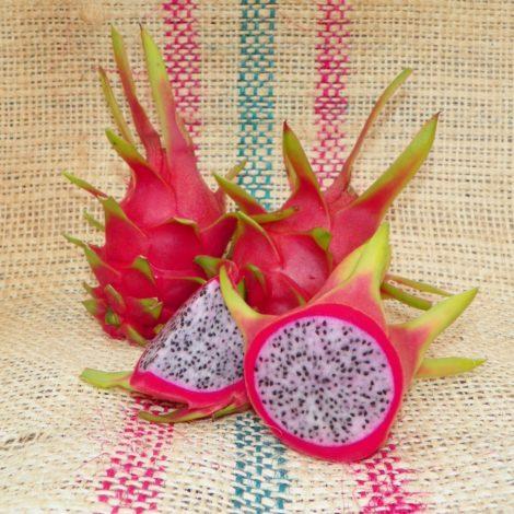 Dragon Fruit variety White Sapphire Spicy Exotics fruit
